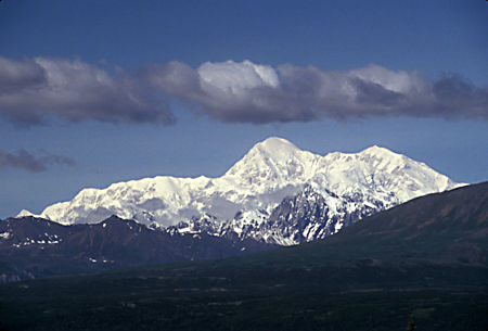 Denali (Mt. McKinley) 20,306' from the Parks Highway