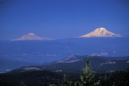 Mt. Rainier and Mt. Adams from Lookout Mountain near Mt. Hood, Oregon